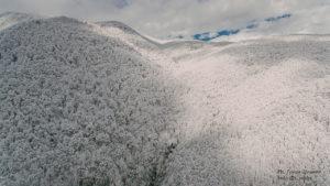 Сочи Газпром зимний лес вид сверху, квадрокоптер